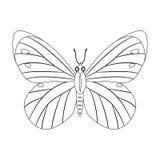 Kleurloze vlinder vectordieillustratie op witte backgr wordt geïsoleerd Stock Foto's