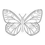 Kleurloze vlinder vectordieillustratie op witte backgr wordt geïsoleerd Royalty-vrije Stock Afbeeldingen
