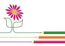 Kleurpotloden die bloem trekken Stock Foto