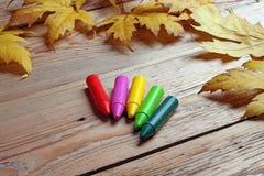 Kleurpotloden en esdoornbladeren Stock Afbeeldingen