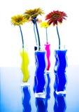 Kleurrijk stock afbeelding