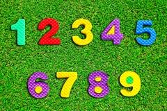 Kleurrijk aantal op groen gras Royalty-vrije Stock Foto