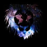 Kleurrijk abstract Leeuwgezicht op zwarte achtergrond; macht en sterktebeeld Royalty-vrije Stock Fotografie