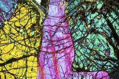Kleurrijk, abstract patroon van mineraal in een het polariseren micrograaf Royalty-vrije Stock Afbeeldingen