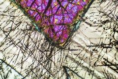 Kleurrijk, abstract patroon van mineraal in een het polariseren micrograaf Stock Afbeeldingen