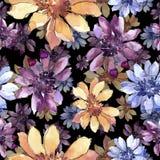 Kleurrijk Afrikaans madeliefje Bloemen botanische bloem Naadloos patroon als achtergrond vector illustratie