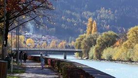 Kleurrijk Autumn Morning door de Rivieroever stock video