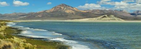 Kleurrijk bergen en meer in Salar de Surire Royalty-vrije Stock Afbeeldingen
