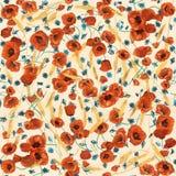 Kleurrijk bloeiend papavers naadloos patroon Royalty-vrije Stock Foto's