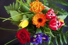 Kleurrijk bloemboeket Royalty-vrije Stock Foto