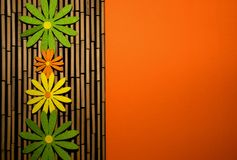 Kleurrijk bloemen en bamboe met sinaasappel Royalty-vrije Stock Foto's