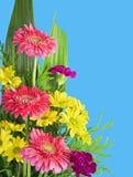 Kleurrijk bloemenboeket Royalty-vrije Stock Foto's
