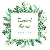Kleurrijk bloemenkader met kleurrijke tropische bladeren royalty-vrije illustratie