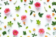 Kleurrijk bloemenpatroon Royalty-vrije Stock Foto