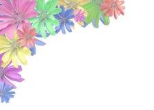 Kleurrijk bloemframe Stock Foto