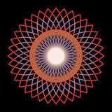 Kleurrijk Bloempatroon met Zwarte Achtergrond Royalty-vrije Illustratie