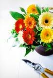 Kleurrijk gerberabloemstuk Royalty-vrije Stock Foto's