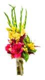 Kleurrijk boeket van amaryllis, gladioli, zonnebloemen, vruchten Royalty-vrije Stock Afbeeldingen