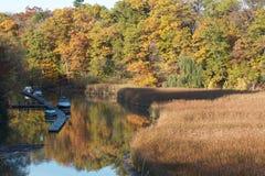 Kleurrijk bos dat in stromende kreek wordt weerspiegeld Royalty-vrije Stock Foto