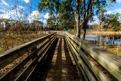 Kleurrijk Creekfield-Meer bij Brazos-Kromming Texas royalty-vrije stock afbeelding