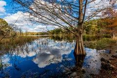 Kleurrijk Creekfield-Meer bij Brazos-Kromming Texas stock foto's