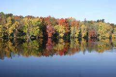Kleurrijk dalingsgebladerte dat rivier wordt overdacht Stock Foto's