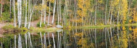 Kleurrijk de herfstbos bij meerkust Royalty-vrije Stock Foto's