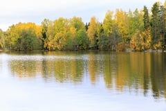 Kleurrijk de herfstbos bij meerkust Royalty-vrije Stock Fotografie