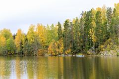Kleurrijk de herfstbos bij meerkust Stock Afbeeldingen