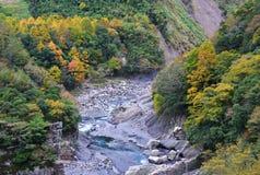 Kleurrijk de herfstlandschap Stock Foto's