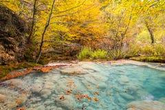Kleurrijk de herfstlandschap bij urederrabron, Spanje Royalty-vrije Stock Afbeelding