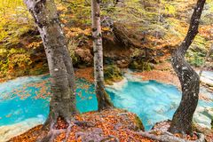 Kleurrijk de herfstlandschap bij urederrabron, Spanje Stock Afbeeldingen
