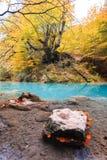 Kleurrijk de herfstlandschap bij urederrabron, Spanje Royalty-vrije Stock Foto