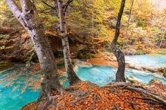 Kleurrijk de herfstlandschap bij urederrabron, Spanje Stock Fotografie