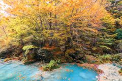 Kleurrijk de herfstlandschap bij urederrabron, Spanje Royalty-vrije Stock Fotografie