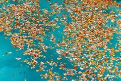 Kleurrijk de herfstlandschap bij urederrabron, Spanje Stock Afbeelding