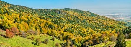 Kleurrijk de herfstlandschap van de de Vogezen-Bergen in de Elzas, Frankrijk stock foto