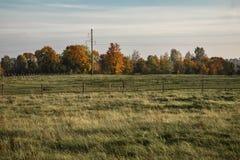 Kleurrijk de herfstlandschap in zonnige dag royalty-vrije stock afbeelding