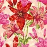 Kleurrijk de lente bloemen naadloos patroon Stock Fotografie