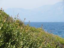 Kleurrijk de zomer overzees landschap Bergkust royalty-vrije stock fotografie