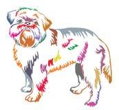 Kleurrijk decoratief bevindend portret van de vector van Brussel Griffon vector illustratie