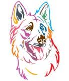 Kleurrijk decoratief portret van de vectorillustratie van Hondberger Blanc Suisse royalty-vrije illustratie