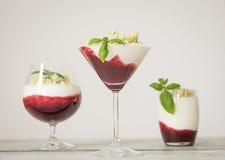 Kleurrijk dessert Stock Foto