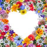 Kleurrijk die Hartkader met Tuinbloemen wordt gemaakt royalty-vrije stock foto