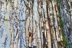 Kleurrijk gelaagd rotsen en gras stock afbeelding