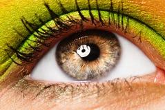 Kleurrijk geschilderd oog Stock Foto