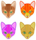 Kleurrijk hoofd van een kat Stock Foto