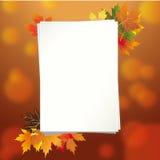 Kleurrijk kader van gevallen de herfstbladeren Royalty-vrije Stock Foto