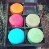 Kleurrijk koekje stock fotografie