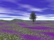 Kleurrijk Landschap Stock Foto's
